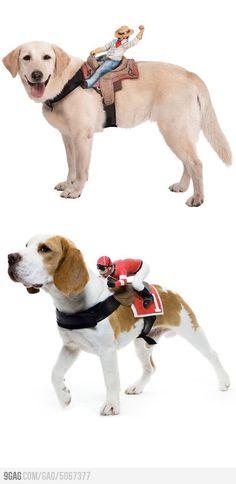 Dog rider costumes.