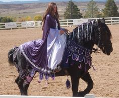 Braymere Custom Saddlery: Halloween with Horses-Horse Costumes