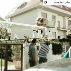 #Repost @mumblestudio with @repostapp  Men at work.  Montaggio pensilina.  #work #cantiere #pensilina #ferro #bianco #ingresso #design #sun #architecture #project #Italia #italy #iron #fabbro #copertura #shelter #roof #italiandesign