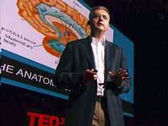 Andres Lozano: Parkinson's, depression and the switch that might turn them off via TED