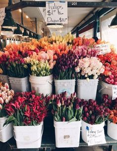 Bouquet of flowers, flower market, flower stall, tulips, peonies My Flower, Beautiful Flowers, Flower Farm, Exotic Flowers, Roses Tumblr, Flower Aesthetic, Flower Market, Flower Shops, Planting Flowers