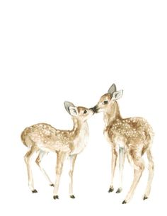 This print was created from an original watercolor of two baby deer kissing. It is so soft and delicate with a nice clean white background. It is such a tender moment captured in a medium that highlights its softness.This print coordinates well with the other baby deer or one of the hand lettered prints in my shop. It is a high quality giclee print on a heavy weight, acid free, archival paper. Each print is meant to last a very long time without fade or yellowing. The paper is beautifully…