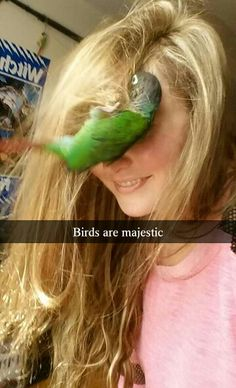 ♥ Pet Bird Stuff ♥ Birds are majestic Haha