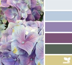 Hydrangea Palette - http://design-seeds.com/index.php/home/entry/hydrangea-palette