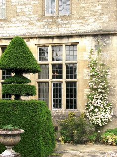 Topiary #architecture #homerenovation http://www.motherofpearl.com