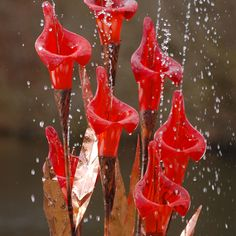 lily-red-garden-copper-glass-water-feature-malibu-fountains.jpg