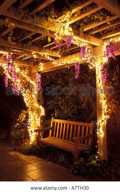 French grape trellis   Google Searchgrapevine pergola     Structure  Grape Plants  Joan Gardens  . Grape Vine Lighting. Home Design Ideas