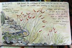 Art Journaling blog   http://artjournaling.tumblr.com/post/4812009120/blooming-ocotillos-nj-by-az-kate