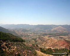 #Jaén #Segura de la Sierra - Sierra de Segura GPS 38.245278, -2.618889  La Sierra de Segura tiene muchos atractivos y pequeños rincones que merece la pena visitar: Paraje de las Acebeas, Río Madera o el Nacimiento del río Segura (Cerca de Pontones, a unos 1400 metros de altitud, en el paraje conocido como Fuente Segura, nace el Río Segura. Un surgente mana de la misma roca, a los pies del pinar del Risco, formando una pequeña laguna de la que puede verse salir el agua.