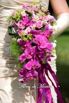 Estilizado ramo en cascada de orquídeas phalaenopsis en tonalidades rosa y rosas miniaturas, decorado por listones de tela fucsia.