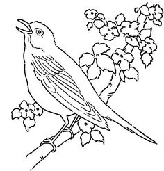 Bird Pictures To Color Coloring Pages Line Art Coloring Page Bird With Blossoms The Graphics Fairy To Color Flower Coloring Sheets, Lion Coloring Pages, Space Coloring Pages, Monster Coloring Pages, Tree Coloring Page, Preschool Coloring Pages, Cartoon Coloring Pages, Coloring Pages For Kids, Coloring Books