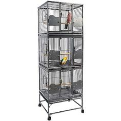 This Parrot Triple Cage - Antique has a large front door, secure lock, pull out grille and tray, feeder doors and a lot more. Check it out. Parrot Cages For Sale, Large Parrot Cage, Parrot Perch, Monk Parakeet, Senegal Parrot, Amazon Parrot, African Grey Parrot, Parrot Toys, Conure