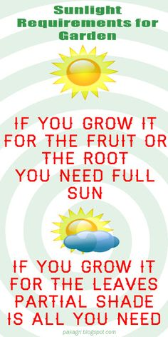 Sunlight requirements for #Garden #farming #vegetable