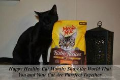 September is Happy Healthy Cat Month: Show the World That You and Your Cat Are Purrfect Together. Plus download a coupon for $2.50 off any bag of Meow Mix Bistro Recipes. #ad #PurrfectTogether @Meow Mix