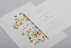 Botanical Collection - Lisa Hedge