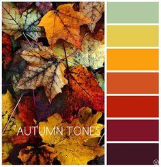 Love Autumn colour palettes