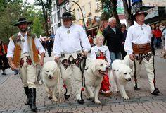 Festiwalu Folkloru Ziem Górskich