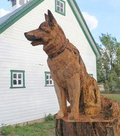 chainsaw razorback log pinterest wildschwein. Black Bedroom Furniture Sets. Home Design Ideas