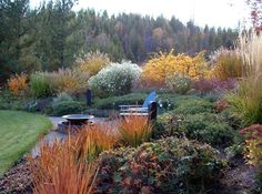 Fall garden, grasses