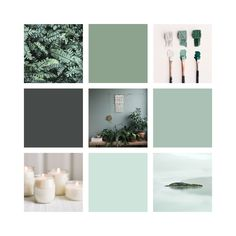 Refreshing green moodboard design by Assimilation Designs   #green #moodboard #branding #design #relax #nature #massagetherapy #spa
