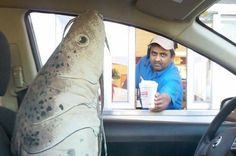 14 Drive-Thru Workers Who Are 100% Done