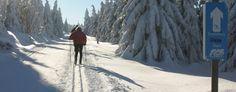 Das Wintersportgebiet nahe Braunlage im Harz ist perfekt für Langläufer. Auf  einer Höhe von 642m könnt ihr euch auf traumhafte Winterwanderwege, beste Loipen und Alpinskifahrten bei Flutlicht freuen.