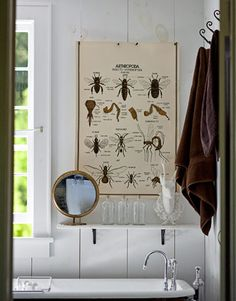 In the master bath, a vintage insect chart hangs above an iron tub from a salvage yard.