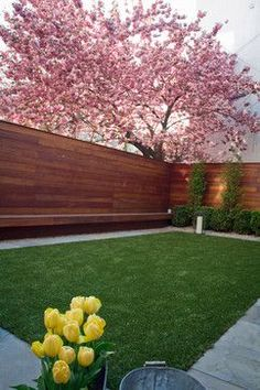 Brownstone backyard