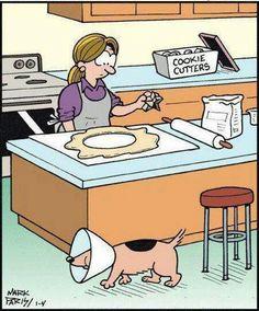 #hwg #Funny Dog Cone Cookie Cutter Thief #Cartoon