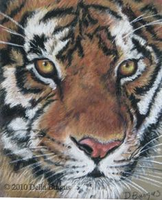 Wildlife Art Close Up Bengal Tiger Pastel by Della Burgus, painting by artist Art Helping Animals