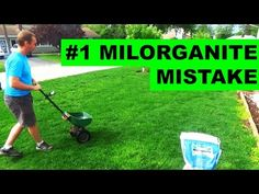 When using milorganite organic fertilizer it's best to read the label! But a good milorganite applicat. Lawn Care Schedule, Lawn Care Tips, Home Landscaping, Front Yard Landscaping, Landscaping Design, Garden Yard Ideas, Lawn And Garden, Lawn Care Business, Lawn Maintenance
