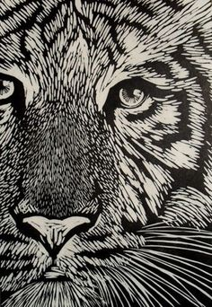 animal print Neck-Turning-Animal-Print-Wall-Art-Id - animals Mc Bess, Scratch Art, Linoprint, Wood Engraving, Linocut Prints, Woodblock Print, Wall Art Prints, Art Drawings, Illustrator
