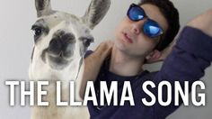 WATCH LLAMA SONG PART 2 HERE! https://www.youtube.com/watch?v=5eP3I... -------------------------------------------------- BUY MY NEW AND LIMITED LL...