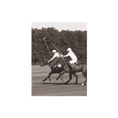 Polo In The Park III Giclee Print Wall Art (82 AUD) ❤ liked on Polyvore featuring home, home decor, wall art, wood wall art, wood home decor, sports wall art, wooden home decor and traditional wall art