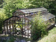 Tropisches Glashaus