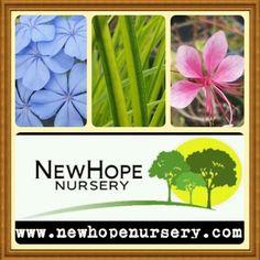 www.newhopenursery.com