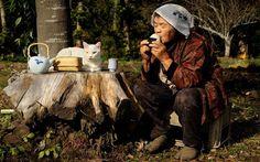 Время пить чай.  Фото: Miyoko Ihara.