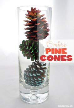 A Simple Fall Craft: Ombre Painted Pine Cones