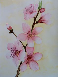 #Cherry #blossom #watercolor