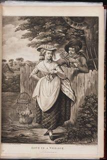 Diary of a Mantua Maker