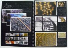 AS Photography Sketchbook, Macro Shoot, Thomas Rotherham College, 2014
