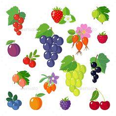 Set of Berries Icons