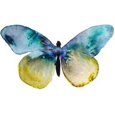 Watercolor Butterfly Illustration Print. Butterfly Art. Butterfly... ❤ liked on Polyvore featuring home, home decor, wall art, butterflies, animals, backgrounds, fillers, watercolor wall art, butterfly home decor and animal wall art