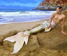 Real Mermaids, Mermaids And Mermen, Mermaid Cove, Mermaid Art, Realistic Mermaid Tails, Life Under The Sea, Mermaid Images, Figure Drawing Reference, Merman