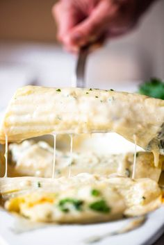 This Chicken and Spinach Manicotti is super easy to make, and smothered in a Copycat Olive Garden Alfredo Sauce. Plus, a hack for filling manicotti! Chicken & Spinach Manicotti is a dish that can be Chicken Manicotti, Baked Manicotti, Cheese Manicotti, Stuffed Manicotti, Baked Lasagna, Stuffed Pasta, Stuffed Shells, Chicken White Sauce, White Sauce Pasta