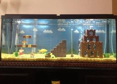 this is so cool ! i want to make this aquarium now