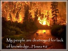 My People Are Destroyed For Lack Of Knowledge | Prophecy