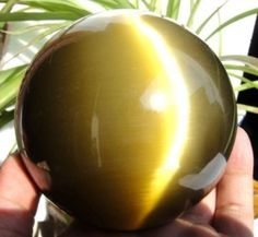 40MM Cats Eye Crystal Sphere/Ball Healing Stone w/Stand