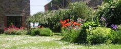 Floraisons et récoltes - Quoi de neuf au potager ?