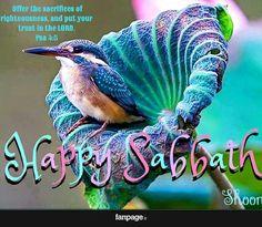 Shabbat Shalom! Feliz Sabado! Happy Sabbath! Shabbat Tov! Bon Sabbat! Sambat Salaam!  #sabbath #shabbat #shabbos #sabado #sambat #sabbat #happysabbath #tencommandments #love #messianicjew #messianicjews #writtenword #writtenword #fridaynight #bible #bibleverse #biblejournaling #God #saturday #mountsinai #jewish #christian #jewish #7thday #seventhday by queenmajeeda